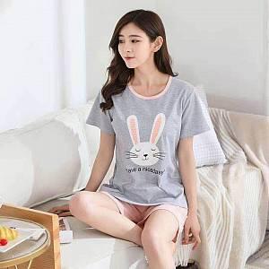 Bc set rabbit nicedasy
