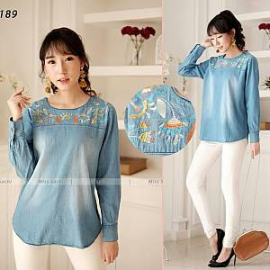 Winter blouse