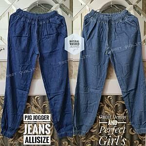 Pjg Jogger Jeans Allsize