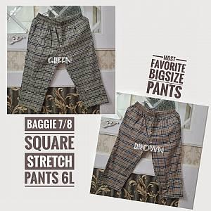 Baggie 7-8 Square Stretch 6L Pants